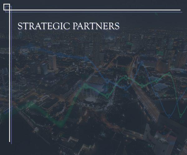 Services_StrategicPartners